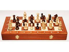 Шахматы Тоурнамент (49 х 49 см)