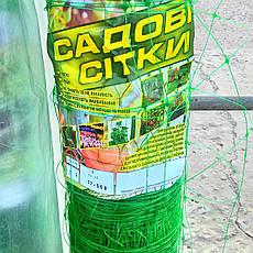 Венгерська сітка шпалерна, для вирощування огірків, рослин, квітів 1,7 м 100 м комірка 15х17, фото 2