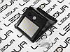 Світлодіодна стрічка OEM ST-12-5050-60-CW-20-V2 біла, негерметична, 1м