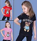Жіноча футболка, С,М,Л (44,46,48) рр, метелики, чорний, фото 2