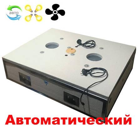 Інкубатор автоматичний Квочка 140, фото 2
