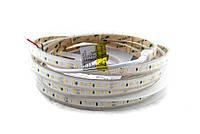 Світлодіодна стрічка вологозахищена 24вольт 8.6 Вт 745лм 2835-120-IP67-WW-10-24 RD30C0TC-B 2700K CRI90 13909о