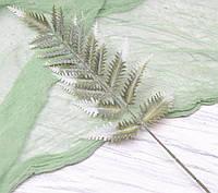 Лист папороті зелений з білим