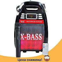 Колонка Golon RX 810 с микрофоном - портативная Bluetooth колонка с радио и светомузыкой, фото 2
