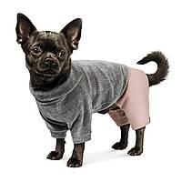 """Pet Fashion Костюм для собак """"ПУНШ"""" XS, фото 1"""
