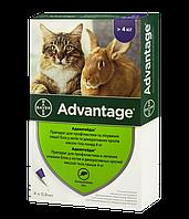 Капли Bayer Advantage (капли от блох) для кошек 4-8кг (1 пипетка)
