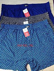 Чоловічі шорти (сімейні труси батал 5,6,7) Марка «CASTOM» арт.350