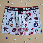 Трусы мужские боксеры RockHard Турция  L, XL, 2XL | 1 шт.