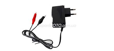 Зарядное устройство для аккумуляторов 12V 2.5/20Ah 'VLAND', фото 2