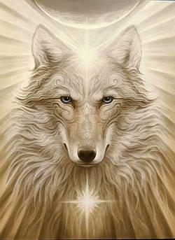 Алмазна вишивка, мозаїка Чарівний діамант Вождь КДІ-1098 55х40 см 15цв Квадратні стрази повна зашивання