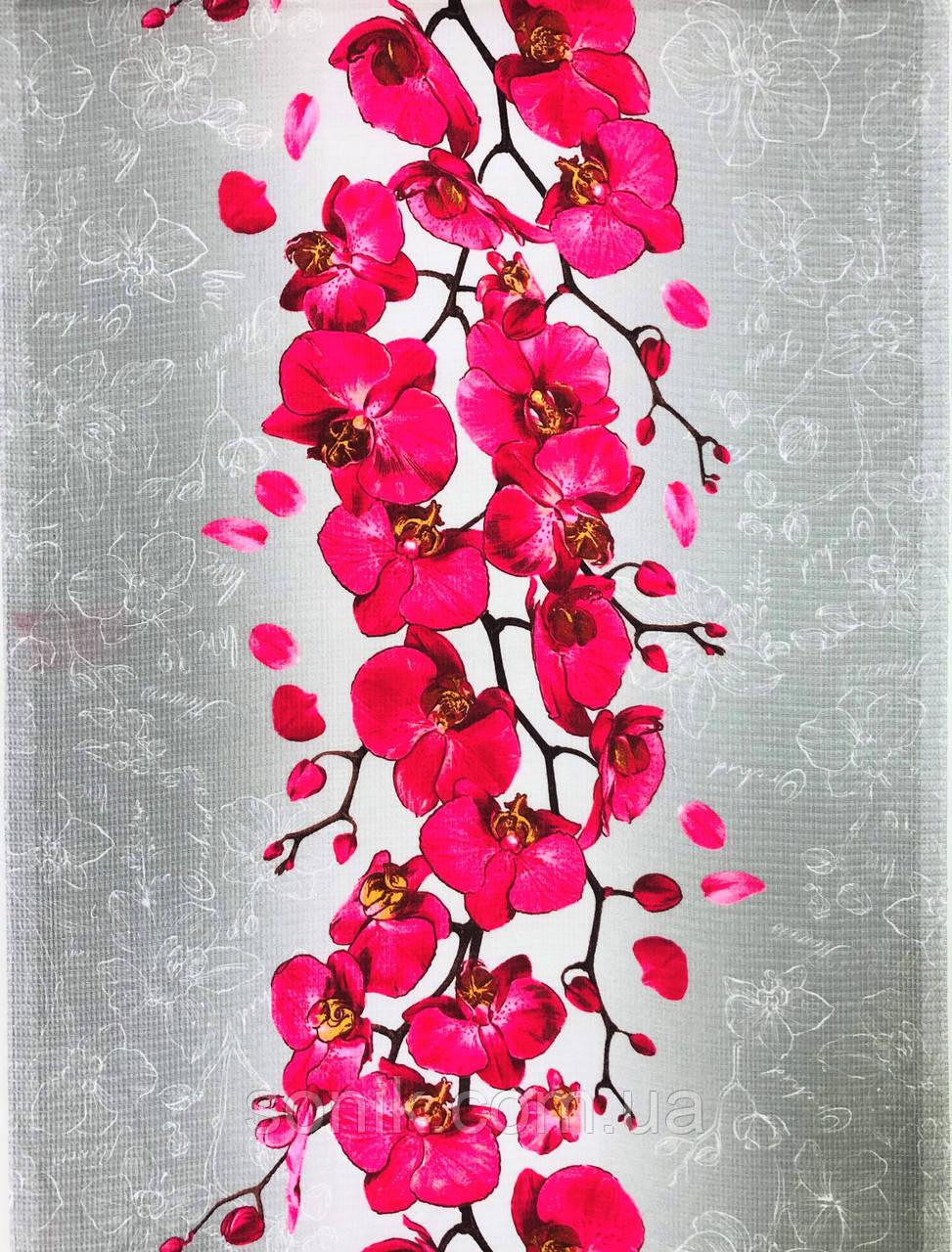Вафельне полотно Орхідея 50 см