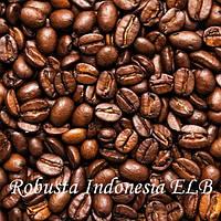 Кофе зерновой Robusta Indonesia ELB 19scr, 1 кг