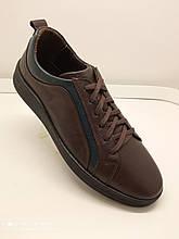 Туфлі чоловічі шкіряні коричневого кольору