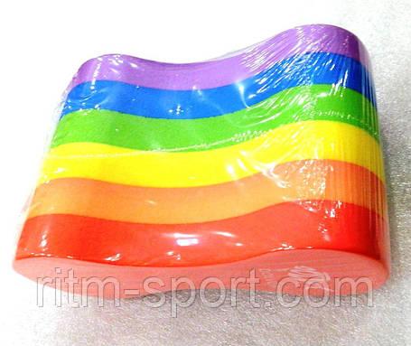 Колобашка разноцветная, фото 2
