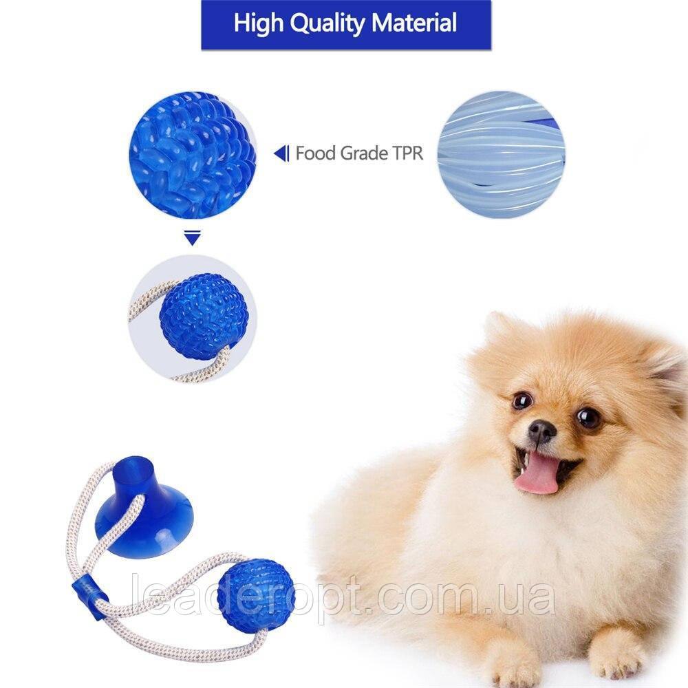 ОПТ Багатофункціональна іграшка для собак канат на присосці з м'ячем