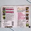 Засіб захисту рослин «Рятувальник для цибулі та часнику», фото 2