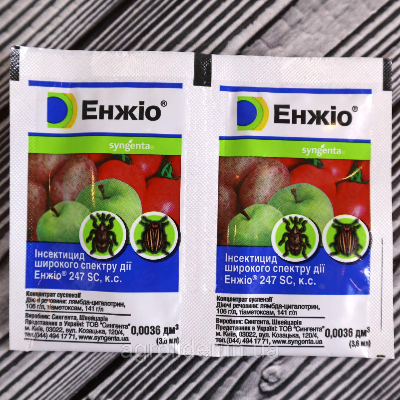 Инсектицид «Энжио» 3,6 мл, средство для защиты от вредителей (Syngenta)
