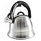 Чайник зі свистком Edenberg EB-1977, фото 2