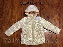 """Демісезонна Куртка дитяча на дівчинку 86-110 см """"Star Kids"""" купити недорого від прямого постачальника"""