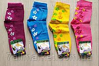 """Шкарпетки дитячі на дівчинку розмір 18-22 (12 шт/уп) (різном.цв)""""MARI"""" купити недорого від прямого постачальника"""