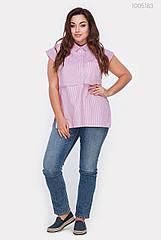 Блузка PEONY Аден 48 Рожевий (1005183)