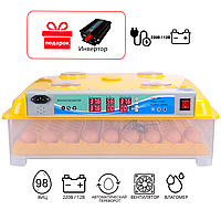Инкубатор автоматический MS 98 с автоматическим переворотом яиц