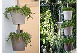 Набір горщиків для квітів RAINBOW PLANTER, фото 2