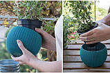 Набір горщиків для квітів, 3 шт., Cozies Herb Pot, фото 2