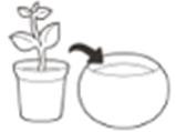 Набір горщиків для квітів, 3 шт., Cozies Herb Pot, фото 5