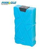 Акумулятори температури 2х600, Pinnacle, фото 3