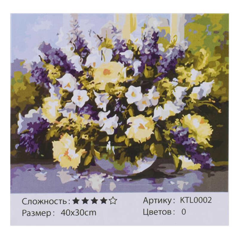 Картина за номерами KTL 0002 (30) 40x30 см, в коробці