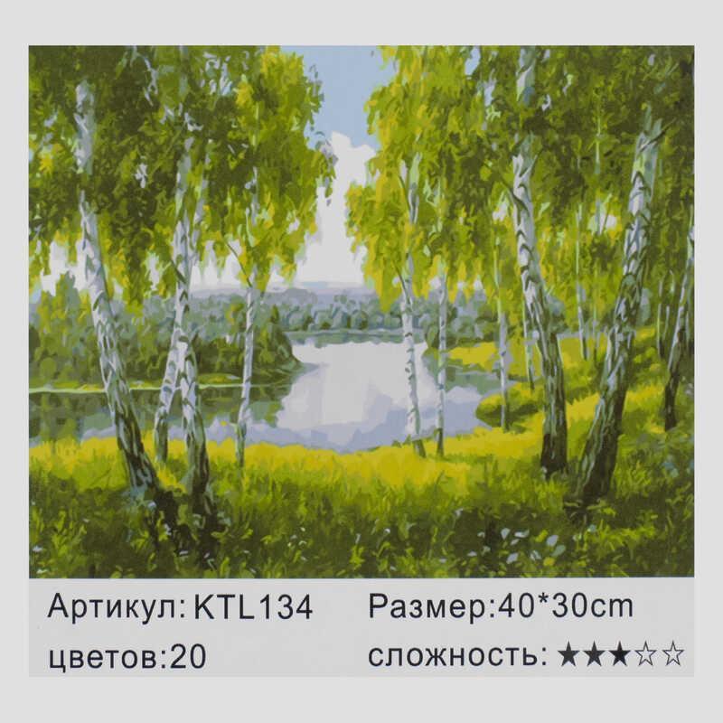 Картина по номерам KTL 0134 (30) в коробке 40х30