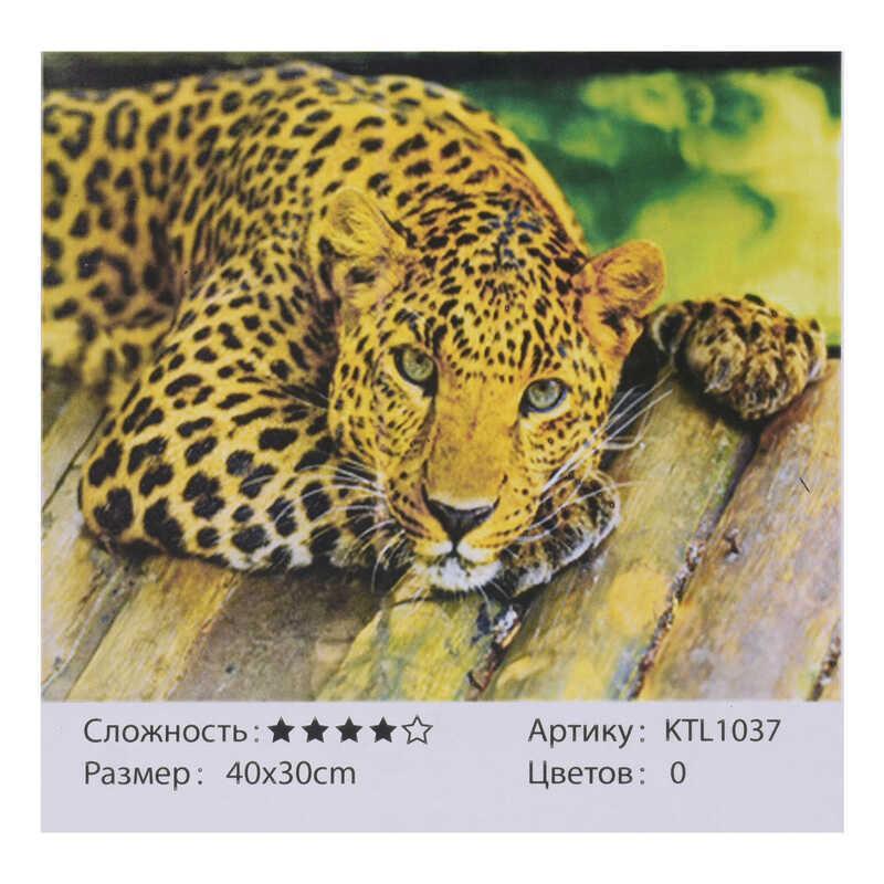 Картина по номерам KTL 1037 (30) 40х30см, в коробке