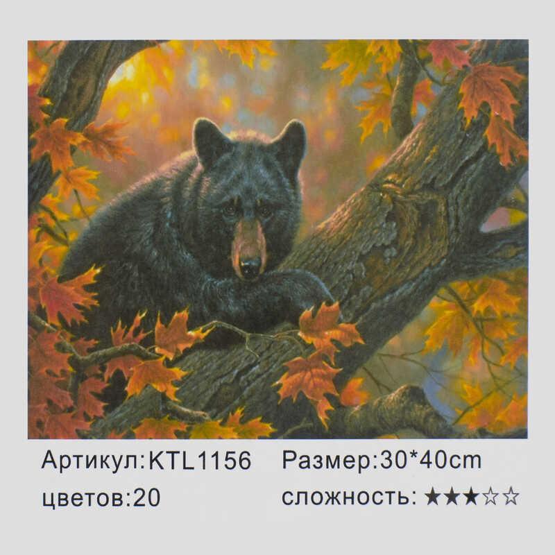 Картина по номерам KTL 1156 (30) в коробке 40х30
