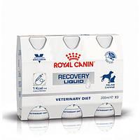 Royal Canin Vet Diet Recovery Liquid 3 X 200ml
