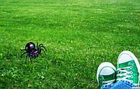 Игрушка паук / конструктор, работающий на соленой воде, фото 1