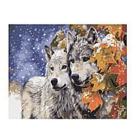 """Картина по номерам """"Пара волков"""" рисование по номерам картини по номерам картины по номерам для взрослых"""
