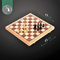 Набір ігор Шахи шашки 2 в 1 дерев'яні ZELART Велика шахова дошка 43 x 43 см (W9042)