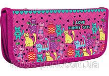"""Пенал пластиковый  """"Funny Cats"""", A6"""