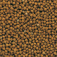 Корм для аквариумных рыб Tetra Gold fish Granules 100 мл гранулы для золотых рыбок и холодноводных