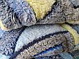 Плед Евро микрофибра плотный пушистый 200*230, фото 4