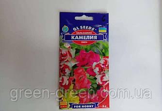 Бальзамін Камелія, насіння