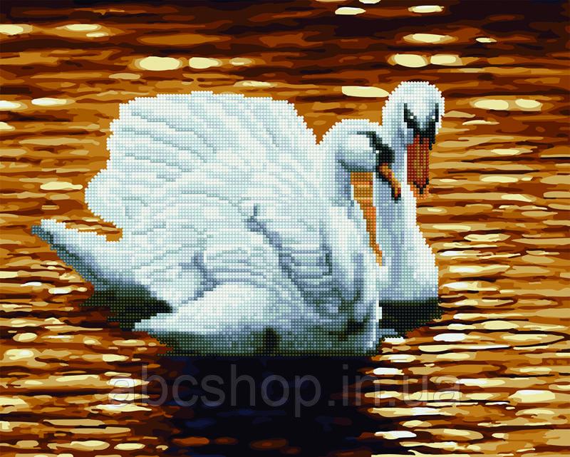 Алмазні картини-розмальовки - Лебеді на ставку