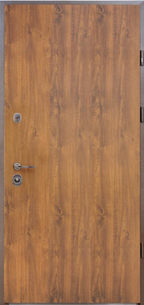 Двері вхідні вуличні STRAJ Proof