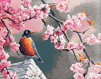 Картины по номерам 40х50 см Brushme Снегирь и сакура (G 041)