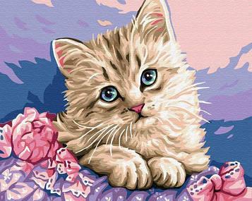 Картины по номерам 40х50 см Brushme Синеглазый котёнок (GX 29696)
