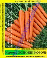 Семена морковки Осенний Король 1 кг