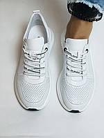 Evromoda.Женские белые кеды- кроссовки. Натуральная кожа. Размер 36,38,39.40, фото 2