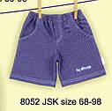 Детские шорты трикотажные синие (Nicol, Польша), фото 6