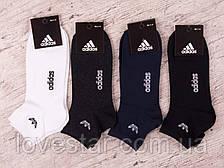 Чоловічі шкарпетки 41-47